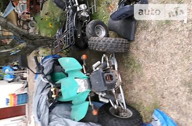 ATV 250 2009 в Берегово