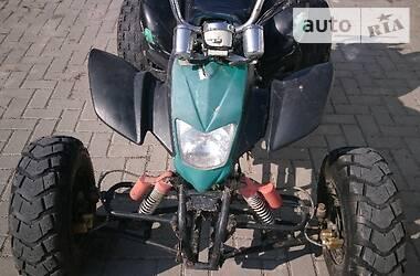 ATV 250 2010 в Шумске