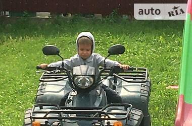 ATV 250 2007 в Великом Березном