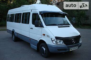 Mercedes-Benz Sprinter 416 пасс. 2002 в Кривом Роге