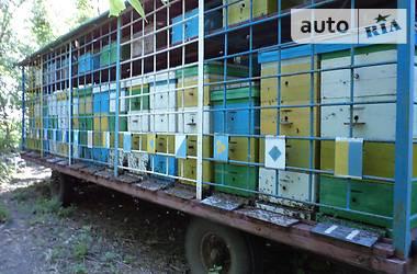 Пчелка Пчелка 1995 в Кропивницком