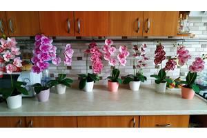 Латексні Орхідеї