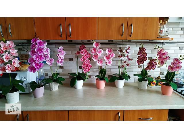 купить бу Латексні Орхідеї в Бершаді