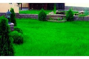 Семена газонной травы Универсальная 1кг
