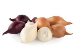 Озимый лук севок BROER BV /Top Onions (Нидерланды). Оригинал.