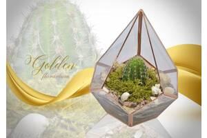 Золотой флорариум! Изысканный подарок на 8 Марта! Хит.