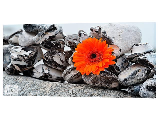 купить бу Картина на холсте Декор Карпаты Камни и цветок 50х100 см (c266) в Киеве