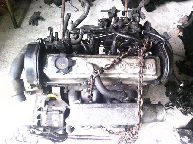 продам б/у Детали двигателя Двигатель Легковой Nissan Sunny 1,7D бу в Ковеле
