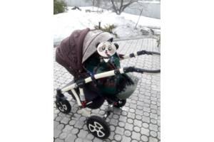 б/в Дитячі універсальні коляски Adamex