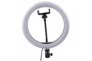 Лампа кільцева світлодіодна MHZ Ring Light 6900