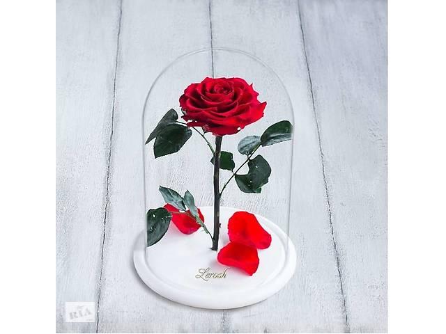 купить бу Стабилизированная роза в колбе Lerosh - Premium плюс 33 см, Красная, на белой подставке SKL15-138967 в Одессе
