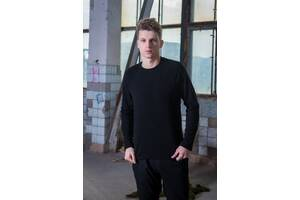 Мужской свитшот флисовый черный SKL59-259565