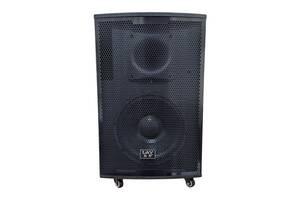 Активная акустическая система LAV E-12 800W с микрофоном