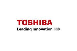 Девелопер TOSHIBA D-2505 Black 55К (6LJ83445000)