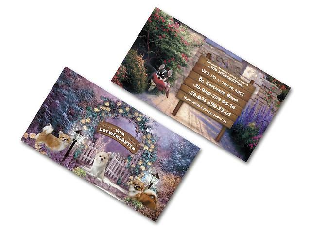 купить бу Дизайн и печать визитки, флаеры, листовки и абонементы  в Украине