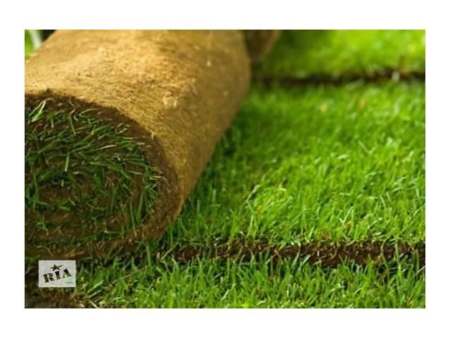 купить бу Газон рулонный и посевной, озеленение, автополив в Черкассах