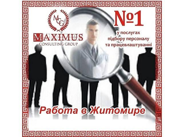 Главный бухгалтер на производственное предприятие- объявление о продаже  в Житомире