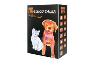 Глюкометр Gluco Calea
