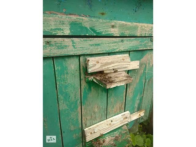 Продам Пчелопакеты Карпатка Самовывоз - объявление о продаже  в Казатине
