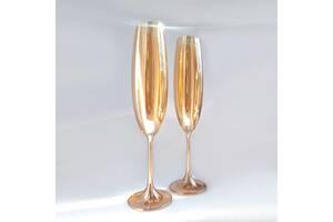 Набір келихів для шампанського Bohemia Milvus 250 мл золотий мед