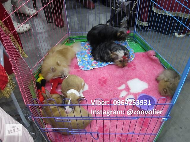 купить бу Ясли, манеж, клетка для собак 130х60х60h с дверкой Бесплатная доставка в Киеве