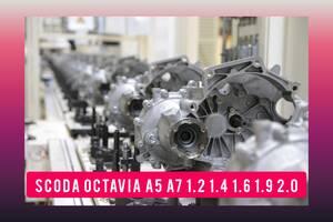 ТОП Skoda Octavia a5 a7 1.4 1.6 1.8 1.9 2.0 КПП Б/у Коробка передач