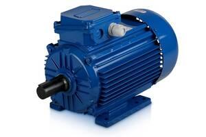 Електродвигун АІР 100 L6 2,2 кВт/1000 об/хв