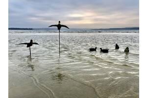 Летящая утка, Манки Чучела муляжи утки, с пружиной
