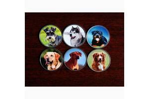 Набор монет Собаки 2020