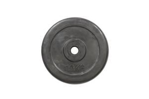 R-10 | Диск прогумований 10 кг
