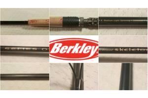 Вудилище Berkley Series One Skeletor 2,40 / 2, 4-24 gr, fast