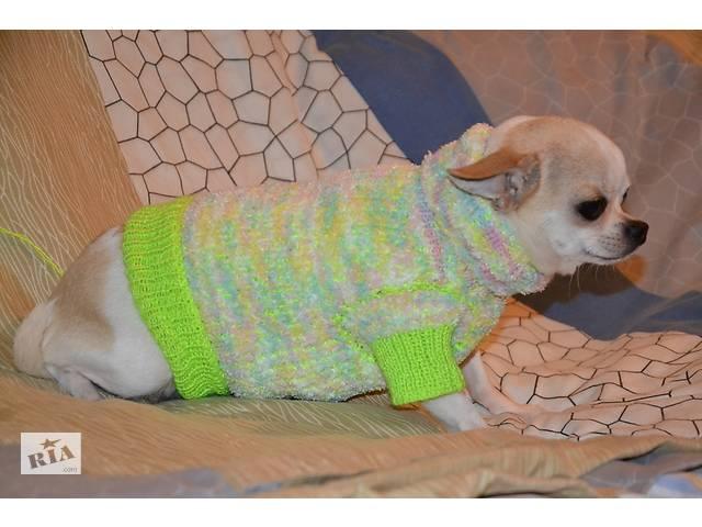 Мягкая одежда для животных. Свитер для миниатюрных пород- объявление о продаже  в Киеве
