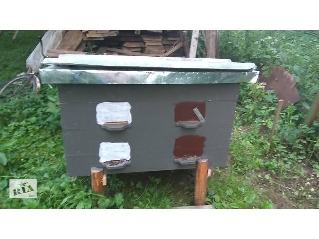 продам продам вулик з бджолами робочими на 2 сімї бу в Трускавце