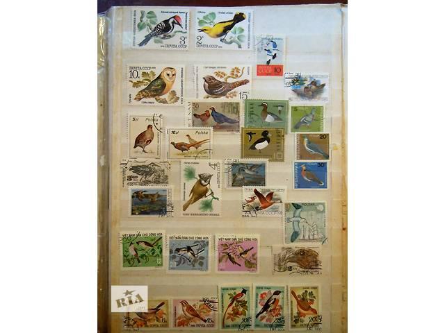 Продам коллекцию почтовых марок (381)шт.- объявление о продаже  в Обухове (Киевской обл.)