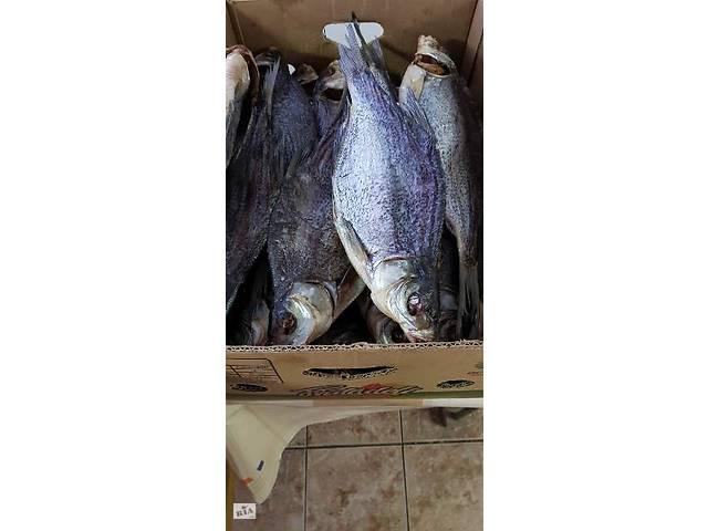 Продам сушеную вяленую рыбу  лещ тарань сом жерех окунь густера судак Опт