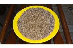 Продам семена кориандра, укропа, шпината, кресс - салата