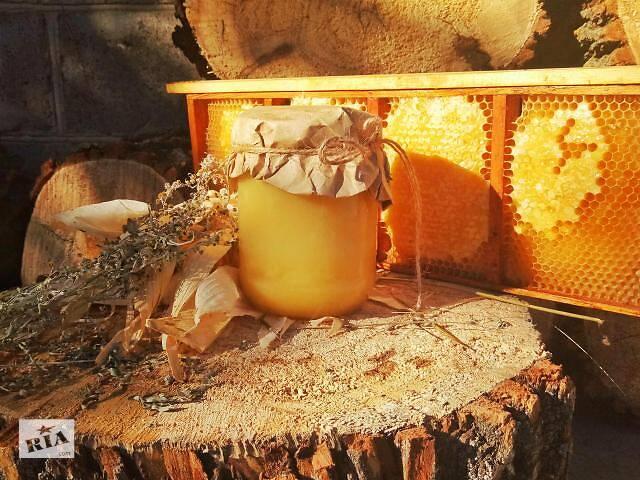 продам Продам вкусный домашний мед бу в Белой Церкви