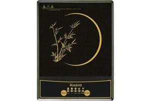 Нові Електроплити Magio