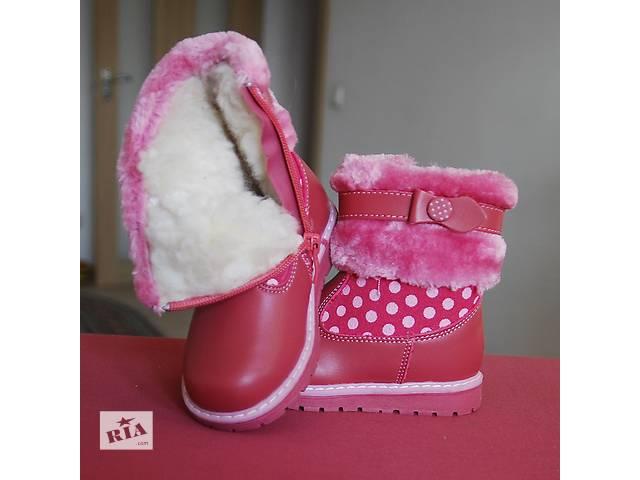 продам з 22р - 27р - зимові черевики на дівчинку в горошок шкіра носок бу в a145b66bb43d7