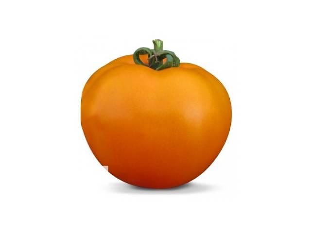 продам Семена оранжевого томата KS 18 F1 фирмы Китано бу в Киеве