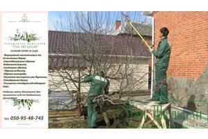 Обрезка деревьев и кустов, спил, в Кропивницком и области