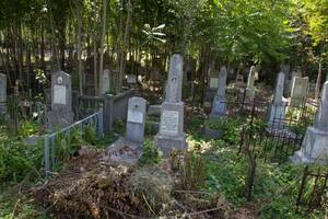 Поиск могил