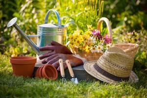 Услуги обслуживания и ухода за садом и газоном