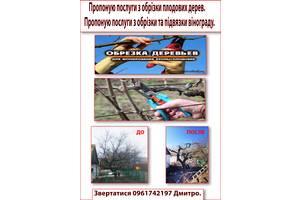 Услуги по обрезке плодовых деревьев и винограда.