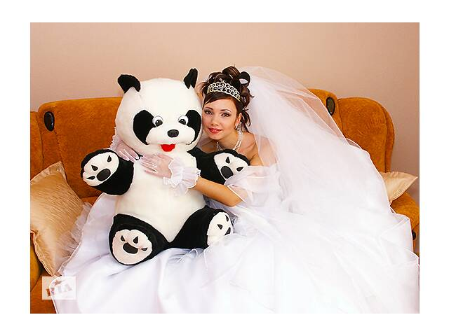 бу Фото, Видеосъёмка, АВТО (лимузин) на свадьбу в Миколаєві