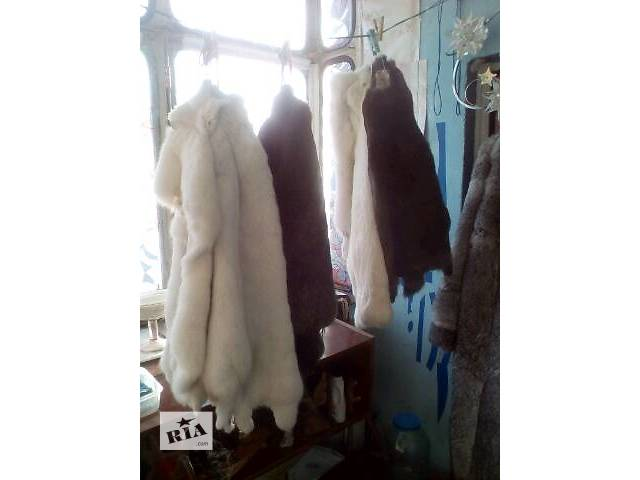 купить бу шкуры кролей в Киеве