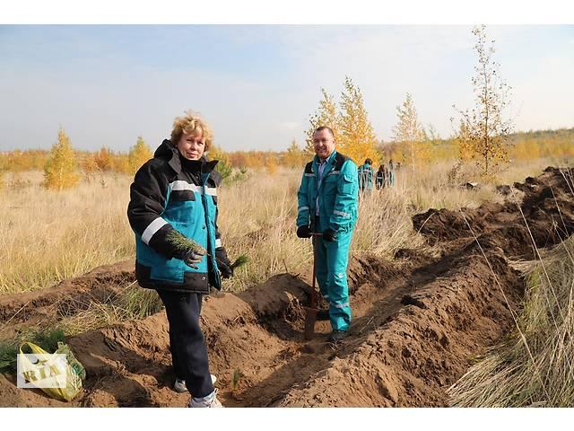 купить бу Работа.Разнорабочие на высадку леса.Чехия  в Украине