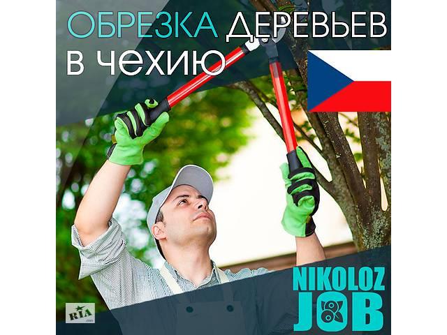 Работа в Европе для мужчин и женщин. Работа в Чехии на фермах- объявление о продаже  в Харькове