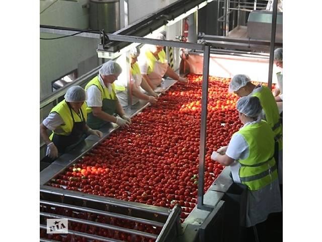 бу Сортування овочів та фруктів  в Украине