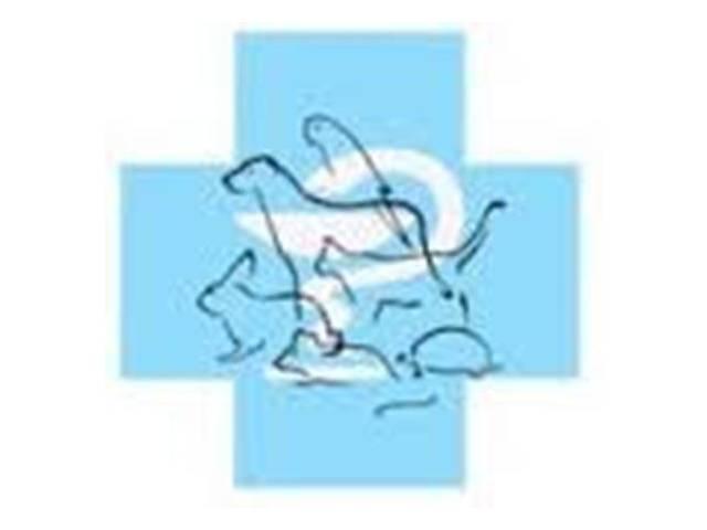 продам Ветеринарная клиника «Айболит» г. Чернигов бу в Чернигове